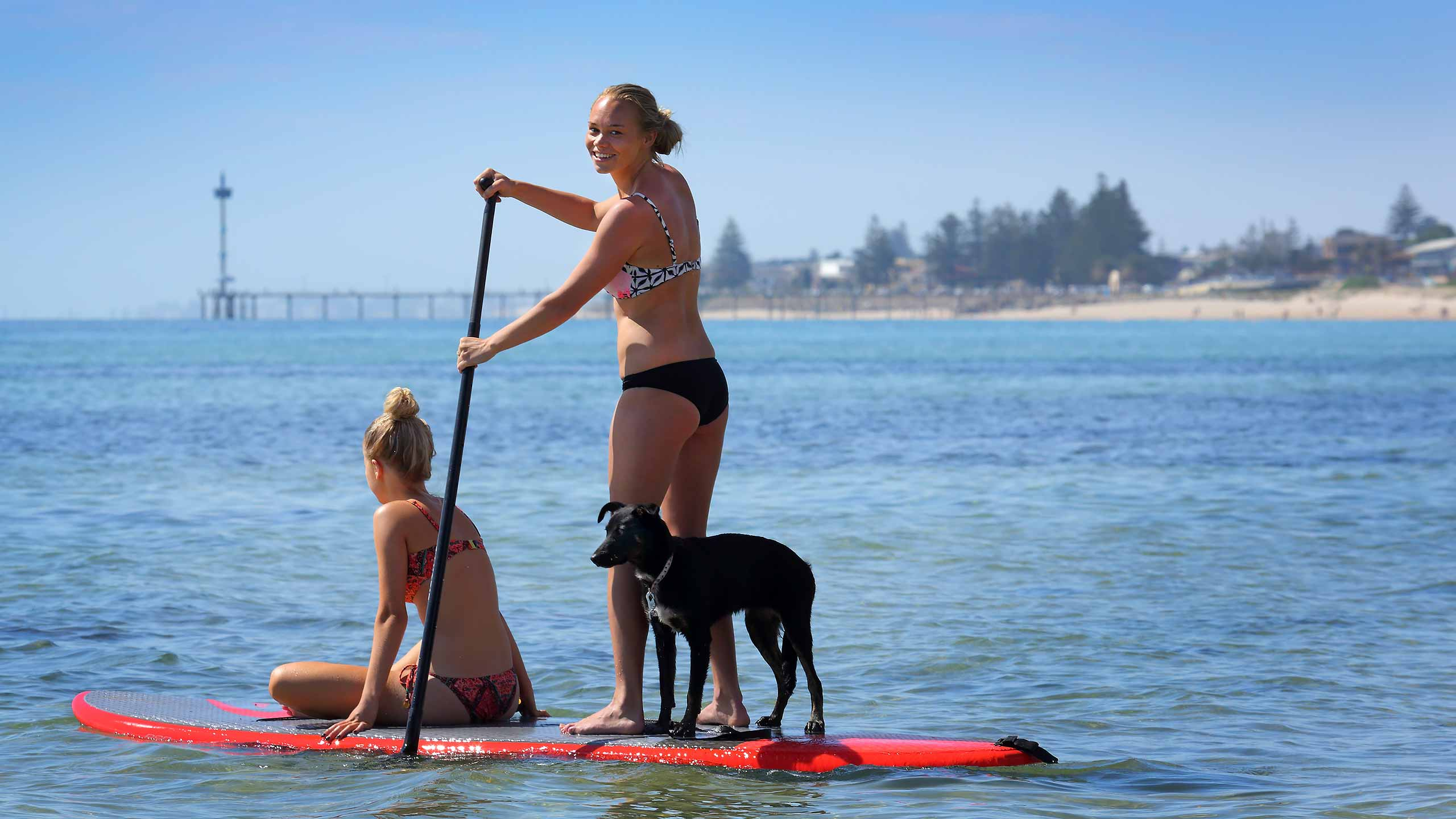 brighton-paddle-boarding-adelaide